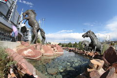 Los caballos salvajes esculpen en el campo de la autoridad de los deportes Fotos de archivo libres de regalías