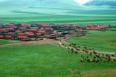 Los caballos vuelven el establo Foto de archivo libre de regalías