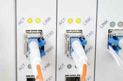 Los cables ópticos de fibra conectaron con accesos ópticos Fotos de archivo libres de regalías