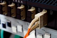 Los cables ópticos de la fibra conectaron con un interruptor Fotografía de archivo libre de regalías