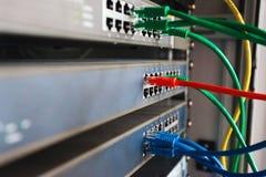 los cables azules, rojos y verdes de la red conectaron con el interruptor Imagenes de archivo