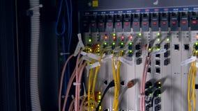Los cables de datos coloridos largos de la red taparon en un interruptor de red industrial 4K