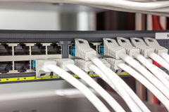 Los cables del ordenador construyeron el enchufe imágenes de archivo libres de regalías