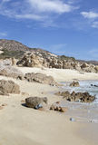 Los cabos Stock Images