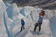 Los cabritos con la madre en el glaciar viajan en Noruega Foto de archivo