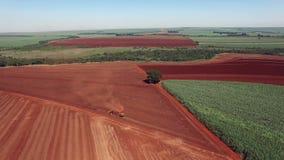 Los cacahuetes mecanizaron la cosecha en el sao Paulo Brazil - el craning aéreo del tractor que cosechaba el campo de los cacahue almacen de metraje de vídeo