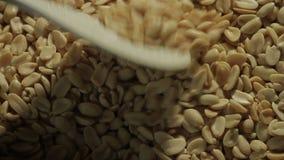 Los cacahuetes pelados se fríen en una cacerola Mano con una cuchara que revuelve nueces metrajes
