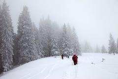 Los caminantes van para arriba en cuesta de la nieve en bosque nevado en el invierno de la neblina Imagen de archivo libre de regalías