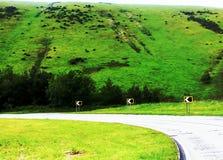 Los caminos curvan llevan para experimentar Fotografía de archivo