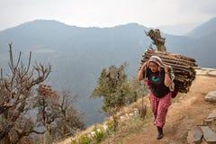 Los campesinos en Nepal hacen el trabajo duro foto de archivo