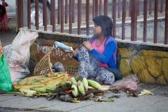 Los campesinos en Nepal hacen el trabajo duro fotografía de archivo libre de regalías