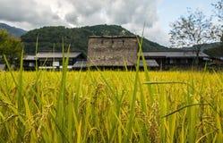 Los campos de arroz adentro Shiragawa-van Fotografía de archivo