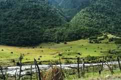 Los campos de la montaña Foto de archivo libre de regalías