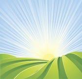 Los campos verdes idílicos con el sol irradian el cielo azul Imagenes de archivo