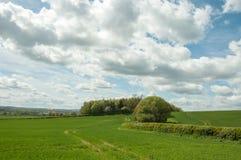 Los campos y el paisaje de Inglaterra Fotografía de archivo libre de regalías