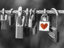 Los candados con el corazón forman en el puente de cuerda sobre fondo blanco y negro Foto de archivo