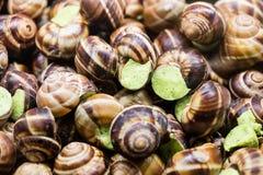 Los caracoles preparados con perejil del ajo untan con mantequilla para la receta francesa de la especialidad Fotos de archivo libres de regalías