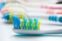 Los cepillos de dientes coloridos son mismo primer Fotos de archivo libres de regalías