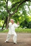 Los chinos hacen taichi afuera Imagen de archivo libre de regalías