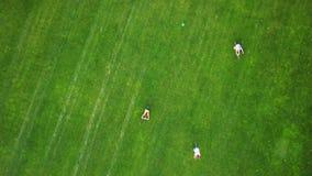 Los ciclistas en un golf colocan, visión aérea almacen de video