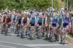 Los ciclistas profesionales compiten con abajo de la calle de Rundle durante el viaje abajo debajo de obra clásica en Adelaide, s Foto de archivo libre de regalías