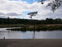 Los cielos azules del lago escocés ajardinan imagen de archivo libre de regalías
