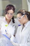 Los científicos jovenes atractivos de los estudiantes del doctorado que observan el color desplazan después del destillation de l fotos de archivo libres de regalías