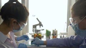 Los científicos mezclan los reactivo del color en vidrio grande en lugar de trabajo en el laboratorio médico en luz brillante almacen de video