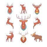 Los ciervos, alces, astas y cuernos, rellenaron la cabeza de los ciervos Fotos de archivo