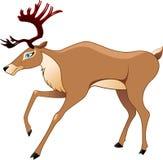 Los ciervos en un vector Foto de archivo
