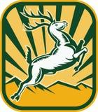 Los ciervos que saltan con las montañas Imagen de archivo libre de regalías