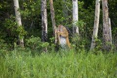 Los ciervos que saltan sobre la cerca fotografía de archivo libre de regalías