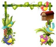 Los cinco pájaros coloridos Imagen de archivo libre de regalías