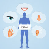 Los cinco sentidos Imagen de archivo libre de regalías