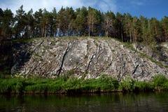 Los cisnes del ` del acantilado oscilan el ` en la orilla del río de Chusovaya Fotos de archivo