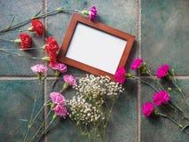 Los claveles coloridos con el espacio del marco y de la copia en el granito emergen Foto de archivo libre de regalías