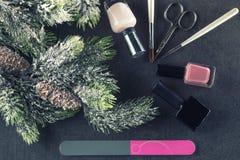 Los clavos del tema del invierno diseñan y manicure, los instrumentos para la manicura con las agujas fotografía de archivo libre de regalías
