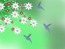 Los colibríes Foto de archivo