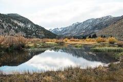 Los colores brillantes de la caída encienden para arriba el borde de un lago alpino fotografía de archivo libre de regalías