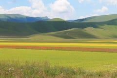Los colores de castelluccio di norcia Fotografía de archivo libre de regalías