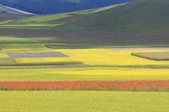 Los colores de castelluccio di norcia Imagenes de archivo