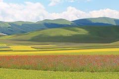 Los colores de castelluccio di norcia Imagen de archivo libre de regalías