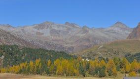 Los colores de la montaña en otoño, amarillo y anaranjado fotografía de archivo libre de regalías