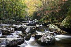 Los colores del otoño Imagen de archivo libre de regalías