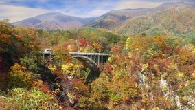 Los colores del otoño de Naruko Gorge en Japón y el azul y la nube agradables b almacen de video