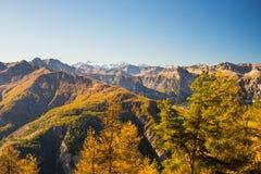 Los colores del otoño en las montañas Imagen de archivo