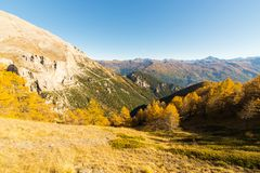 Los colores del otoño en las montañas Foto de archivo