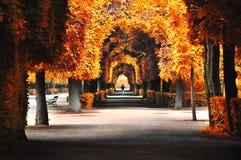 Los colores hermosos del otoño en una ciudad parquean para el placer y la reconstrucción Foto de archivo libre de regalías