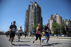 Los competidores del 31ro maratón internacional de Belgrado corren en la calle de la ciudad Imagenes de archivo