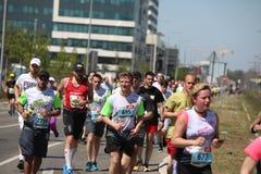 Los competidores del 31ro maratón internacional de Belgrado corren en la calle de la ciudad Foto de archivo libre de regalías